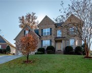 8229  Cool Spring Court, Indian Land image