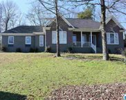 210 Cambo Terr, Hoover image