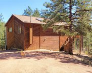 16456 Ouray Road W, Pine image