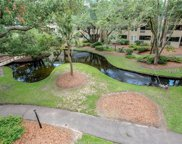 239 Beach City Road Unit #1326, Hilton Head Island image