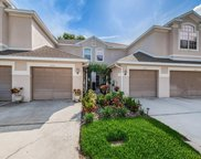 3645 Country Pointe Place, Palm Harbor image