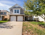 15316  Yellowstone Springs Lane, Charlotte image