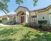 8867 Lely Island Cir, Naples image
