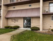 1380 Oakwood Avenue Unit #302, Des Plaines image