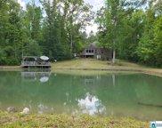 715 Lovejoy Rd, Ashville image