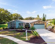 7503 Lily Pad Court, Hudson image