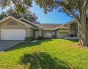 1596 Powder Ridge Drive, Palm Harbor image