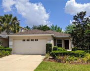 7851 Tuscany Woods Drive, Tampa image