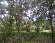 62 Wilderness, Defuniak Springs image