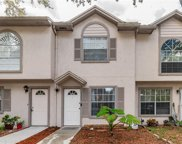 2209 Fletchers Point Circle, Tampa image