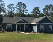 573 SW LONG LEAF DR, Lake City image
