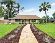 11716 Lipsey Road, Tampa image