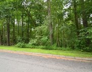 21D-16 Wildflower Dr, Amherst image