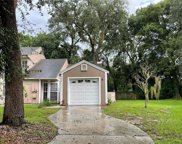 9414 Forest Hills Circle, Tampa image