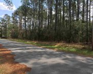 Lot 19 Alligator Ct., Conway image