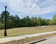 1244 Wood Stork Dr., Conway image