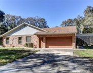 1515 Saddle Run Drive, Osteen image
