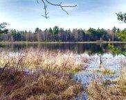 Par B White Lake, Dalton Twp image