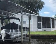 304 Colonial Boulevard, Palm Harbor image