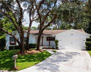 111 Wheatland Court, Longwood image