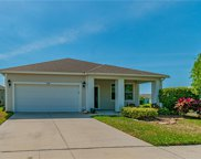 11572 Balintore Drive, Riverview image