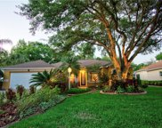 11315 Pine Lilly Place, Lakewood Ranch image