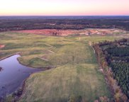 133+ Acres Moores Road, Edgefield image