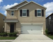 10440 Whispering Hammock Drive, Riverview image