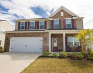 1337  Hideaway Gulch Drive, Fort Mill image