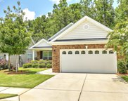 207 Angora Way, Summerville image