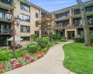 1027 Washington Boulevard Unit #202, Oak Park image