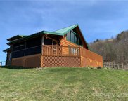 644 Turkey Trot  Road, Clyde image