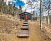 2197 S Beaver Creek Road, Black Hawk image