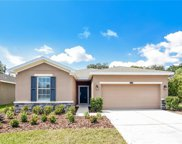 2615 Holly Bluff Court, Plant City image