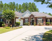 2910 Whooping Crane Dr., North Myrtle Beach image
