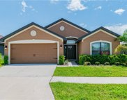 12246 Legacy Bright Street, Riverview image
