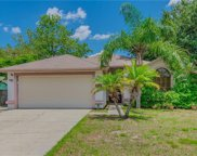 12008 Vermillion Way, Riverview image