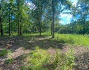 Meadowlark Lane, Greensboro image