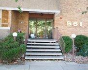 551 Pearl Street Unit 509, Denver image