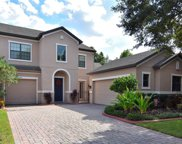 3308 Majestic View Drive, Lutz image