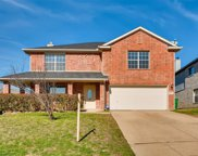 6509 Willow Oak Court, Fort Worth image