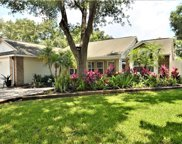 2032 Diane Avenue, Palm Harbor image