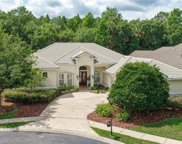 16366 Heathrow Drive, Tampa image