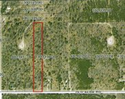 Old Alba Unit 5 acres, Gaylord image