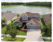 19312 Yellow Clover Drive, Tampa image