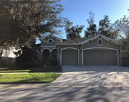 3004 Maple Shade Place, Seffner image