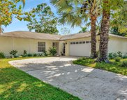 15709 Squirrel Tree Place, Tampa image