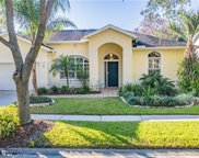 9311 Hampshire Park Drive, Tampa image