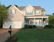 3019 Romain Trail, Spring Hill image