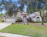 18106 Pecan Grove Place, Lutz image